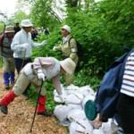 松山湿原の山菜・きのこ・花ガイド