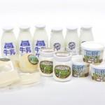 日本で唯一 国産羊乳製品