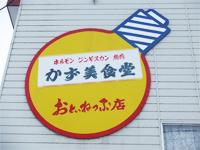 kazumi04